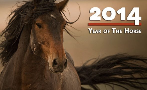 Losar Happy losar 2014 year of the horse paard 2