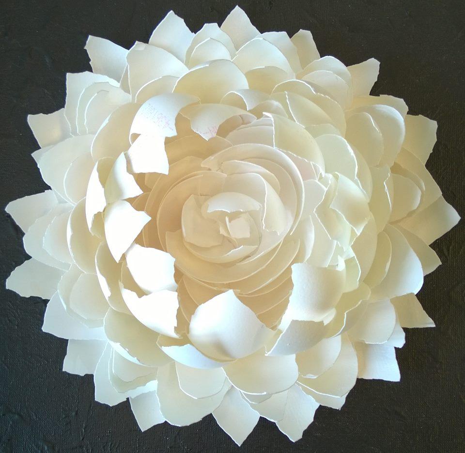 Lotusbloem, Mary Fontaine.
