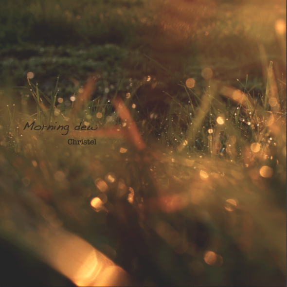 Cover Morning dew
