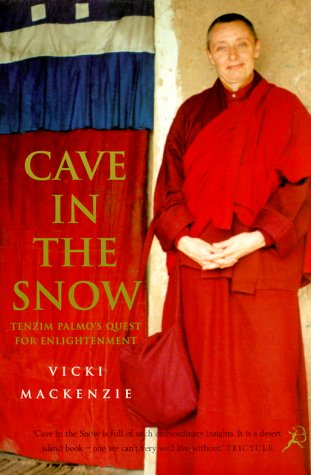Boeken Cave in the snow
