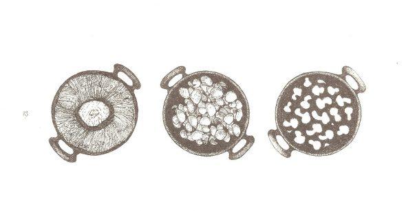 Beter paddenstoelengerecht champignons tekening Evelien Kroese