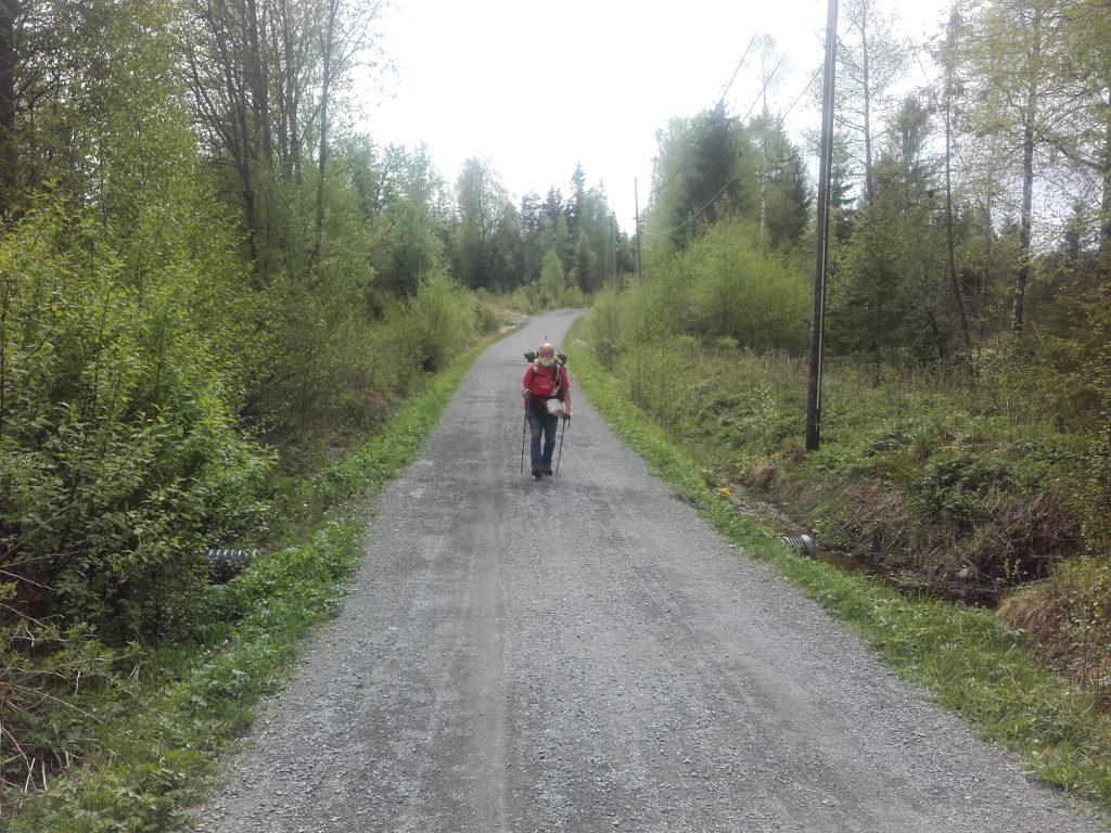 Menno Prins onderweg, op een pad door het bos.