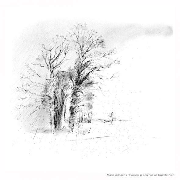 zen zien tekenen bomen in een bui