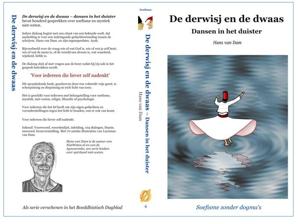 Omslag van het boek 'De derwisj en de dwaas – dansen in het duister