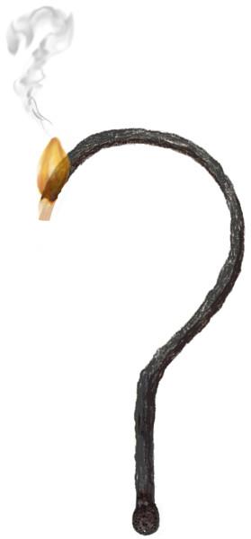 Vraagteken in de vorm van een verbrande lucifer; de top brandt nog een beetje na en er komt een rooksliertje uit de vlam in de vorm van een vraagteken.