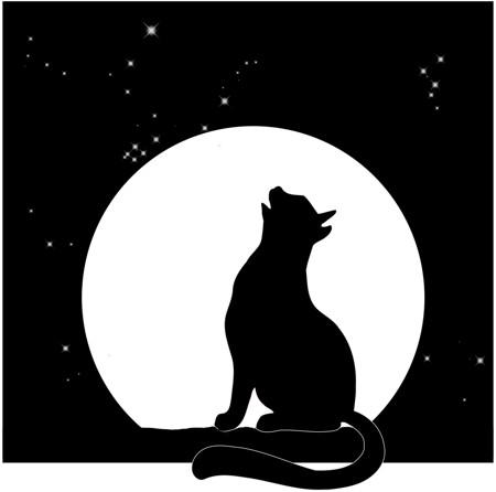 Silhouet van een poes huilend naar de volle maan.